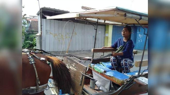 Devi Camelia Rela Menjadi Kusir Delman di Tasikmalaya Gantikan Sang Ayah: Buat Apa Malu