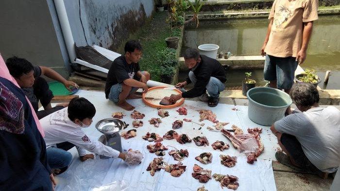 Anak Buah Cak Imin, Prabowo, dan Zulhas di Kuningan Potong Hewan Kurban untuk Dibagikan ke Warga