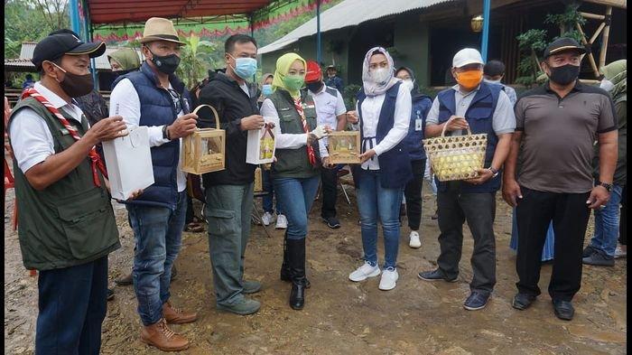 Ubah Lahan Tandus 70 Hektare, Sereh Wangi Sugih Mukti Buatan Kodim 0617 Majalengka Jadi Percontohan
