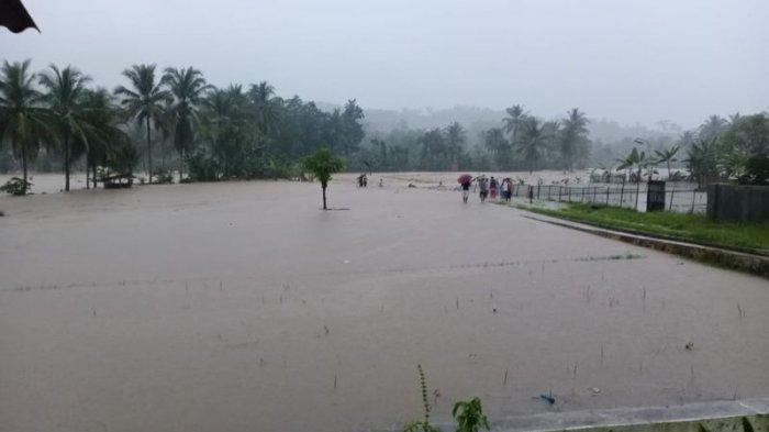 Ratusan Hektare Lahan Pertanian di Tasikmalaya Gagal Panen Pascaditerjang Banjir, Kerugian Miliaran
