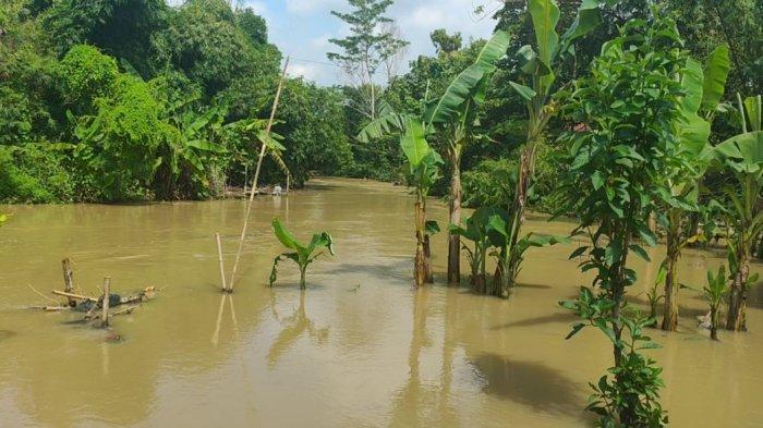 BREAKING NEWS: Banjir Kembali Terjadi di Desa Leuweunghapit Majalengka