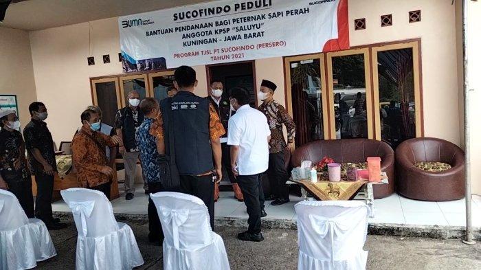 Peternak Sapi Perah di Kuningan Ketiban Kucuran Dana Rp 1,1 M dari PT Sucofindo