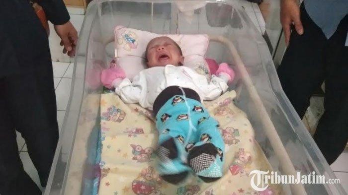 Bayi dalam Tas Kain Digantung di Pagar Panti Asuhan, Dikira Suara Kucing Ternyata Rintihan Bayi