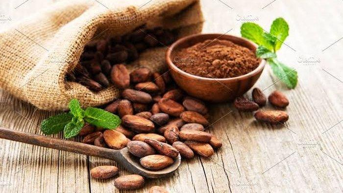Segudang Manfaat Bubuk Kakao Bagi Kesehatan, Ampuh Turunkan Tekanan Darah Tinggi Hingga Obati Asma