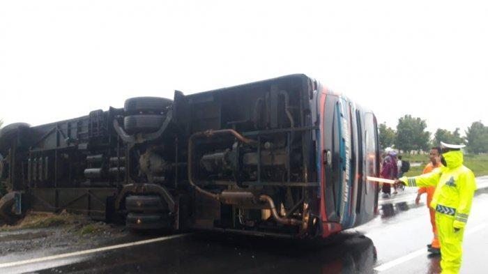 Kecelakaan di Tol Cipali, Bus Sarat Penumpang Terguling, 5 Penumpang Luka-luka