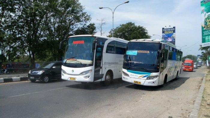 Bus-bus Tak Bisa Masuk Tegal Karena Ada Lockdown, Penumpang pun Diturunkan di Tepi Jalan Tol
