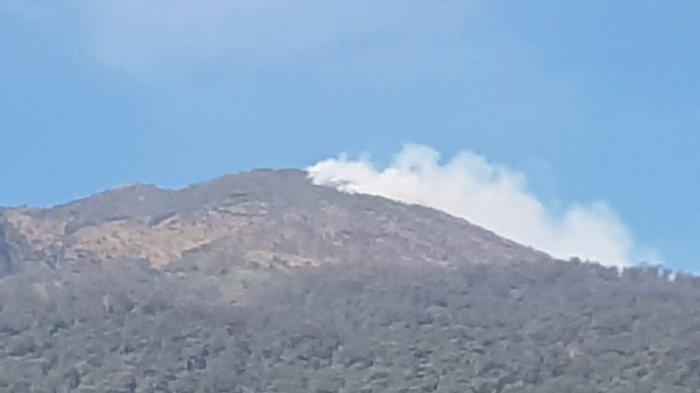 Api Semakin Meluas Membakar Lahan di Gunung Ciremai, Petugas Evakuasi 61 Orang Pendaki