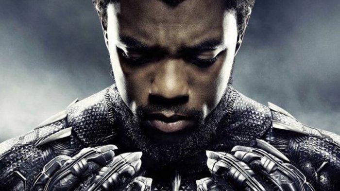 Chadwick Boseman Pemeran Black Panther di Film Avengers Meninggal Dunia Karena Kanker Usus