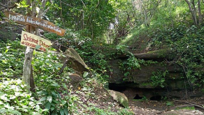 Selain Fosil Gajah Purba, Pernah Ada Temuan Tulang Raksasa di Wisata Alam Ciwado Indramayu