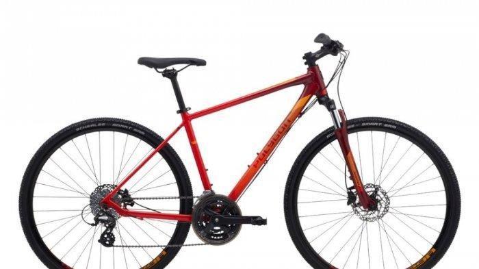 Nih Daftar Harga Sepeda Murah, Harga Mulai Rp 1-2 Jutaan, Kualitas Oke, Tinggal Gowes Saja