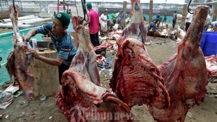 INILAH Cara Mengolah Daging Kambing yang Benar, Daging Dijamin Empuk dan Tak Bau Prengus