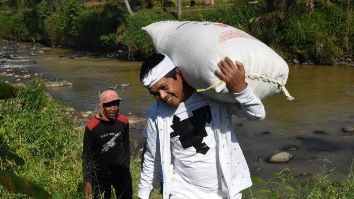 Dedi Mulyadi Bilang Pupuk Makin Langka: Jangan Remehkan Petani, Masalah Sederhana Gak Beres-beres