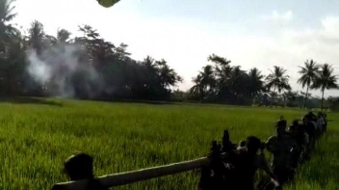warga Desa Karangsari, Kecamatan Padaherang, Kabupaten Pangandaran, Jawa Barat Saat Penangkapan Babi