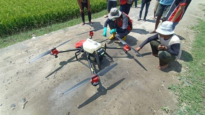 Uji coba penyemprotan pupuk menggunakan drone di lahan pertanian di depan kantor Balai Penyuluh Pertanian (BPP) Kecamatan Krangkeng, Kabupaten Indramayu, Kamis (16/9/2021).