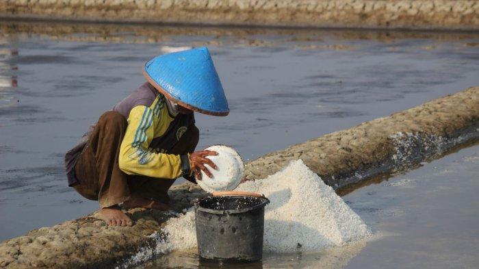 Disperdagin Sebut Ada 3 Faktor Ribuan Ton Garam di Cirebon Tak Laku Terjual