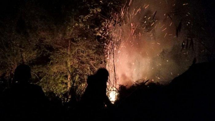 Puluhan Hektare Lahan Gunung Cikuray Terbakar,Petugas Sempat Kesulitan Padamkan Api Karena Sulit Air