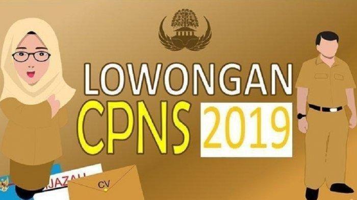 Link sscasn.bkn.go.id Pendaftaran CPNS 2019, Akses Malam Ini Pukul 23.11, Begini Cara Mengisinya