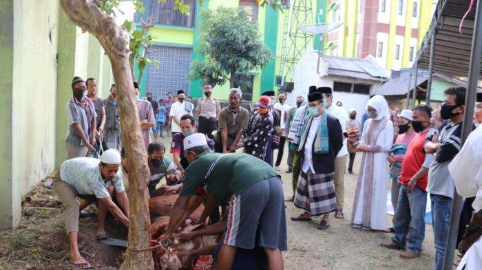 INILAH Doa dan Tata Cara Menyembelih Hewan Kurban di Tengah Pandemi Covid-19 dari Kementrian Agama