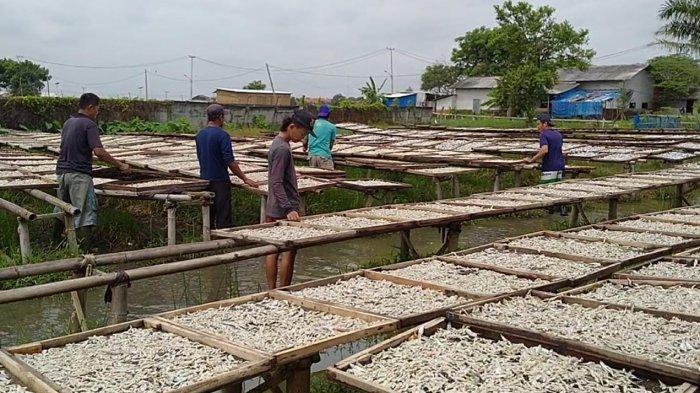 Cuaca Buruk Penyebab Pengiriman Ikan Asin dari Indramayu Ke Berbagai Daerah Tertunda