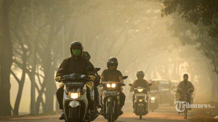 VIDEO: Pengendara Pingsan & Nabrak Pohon Karena Kabut Asap Karhutla, Gerindra Tagih Janji Jokowi