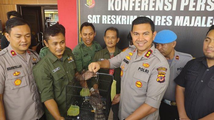Polres Majalengka Serahkan Hewan Langka Hasil Sitaan ke BKSDA Cirebon
