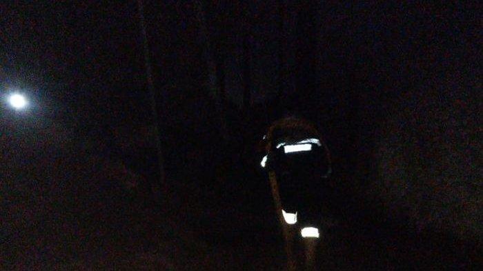 Api Berkobar di Pabrik Pengolahan Kayu Haji Asep, Damkar Sigap Padamkan Api, Kerugian Rp 8,5 Juta