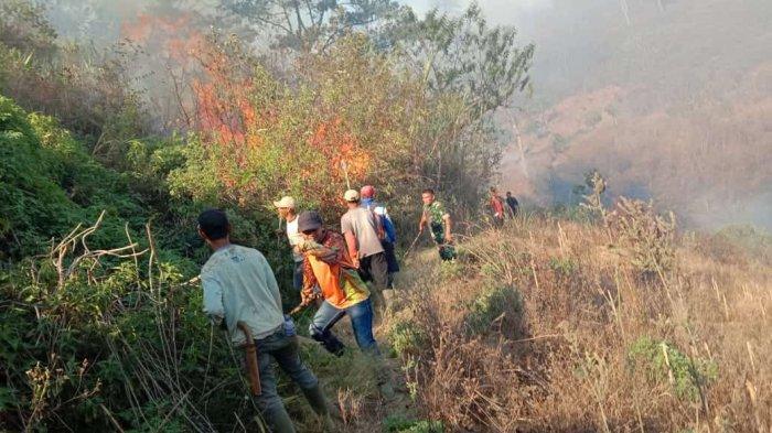 Lahan Hutan Gunung Malabar Terbakar Sejak Jumat Malam, Medan Berat Petugas Sulit Padamkan Api