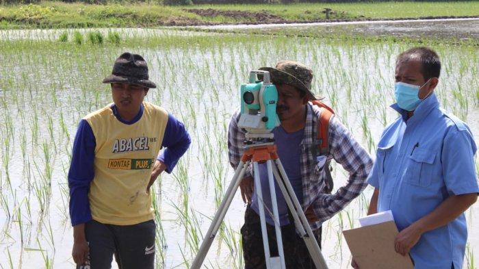 Kegiatan ekskavasi di lokasi temuan batu bata kuno yang diduga candi di Blok Dingkel, Desa Sambimaya, Kecamatan Juntinyuat, Kabupaten Indramayu, Rabu (26/5/2021).