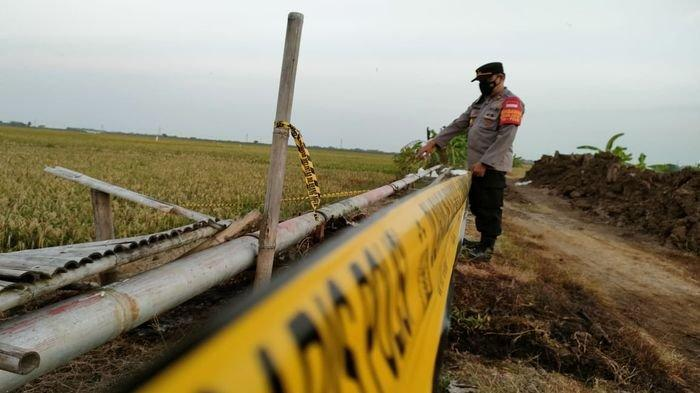 Ada Pipa Bocor di Indramayu, Pertamina Langsung Lakukan Perbaikan dan Data Padi Petani yang Mati