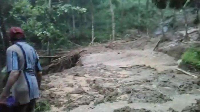 2 Pohon Besar Tumbang Saat Longsor Padahurip, Petugas BPBD Standby Sosialisasi Keselamatan Warga