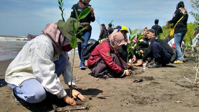 Potensi Ekonominya Besar, Hutan Mangrove Indramayu Diharapkan Bisa Dicontoh Daerah Lainnya di Jabar