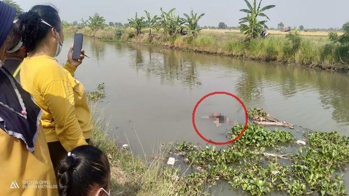 BREAKING NEWS: Misteri Bocah Membusuk di Sungai Indramayu Terungkap, Ibu Tiri Sewa Pembunuh Bayaran