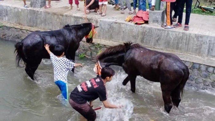 Siap Bertarung di Porda Jabar, Pordasi Kuningan Siap Buktikan Kemampuan Joki Kuda-kuda Kuningan