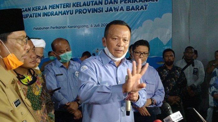 Edhy Prabowo Izinkan Ekspor Benih Lobster, di Era Susi Pudjiastuti Dilarang: Masa Sih Enggak Boleh?