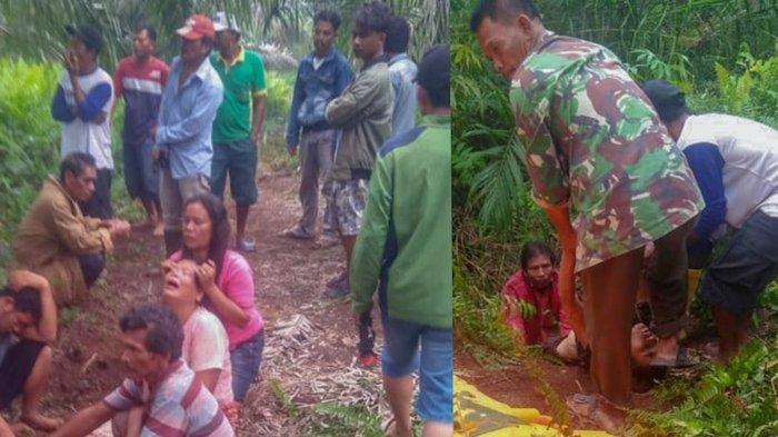 Siswi SMP di Asahan Sumut Ditemukan Tewas di Perkebunan Sawit, Ibunya Menangis Meronta-ronta