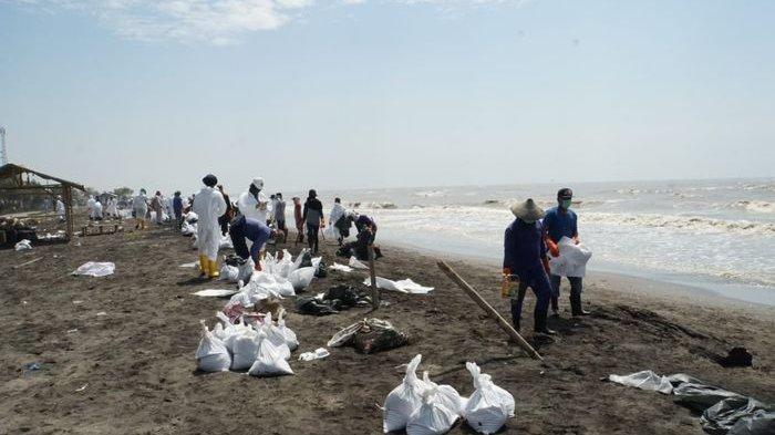 Pantai Utara Karawang Tercemar Minyak Mentah Pertamina, Pasir Pantai Terlihat Menghitam