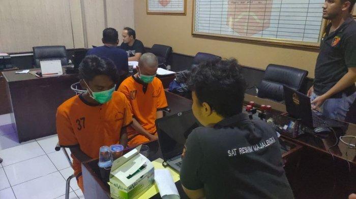 Jual Satwa Liar yang Dilindungi Jenis Meong Congkok & Alap-Alap Jambul, Dua Pelaku Ditangkap Polisi