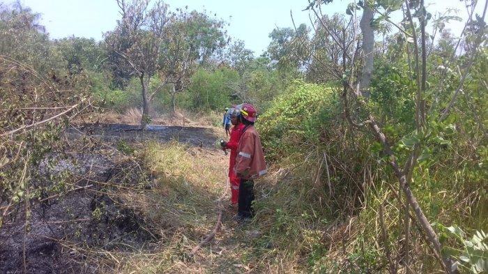 Hampir Setiap Hari Kebakaran Lahan Terjadi di Indramayu, Kali Ini Diduga Disebabkan Puntung Rokok