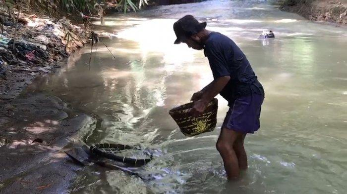 Cerita Penambang Pasir Sungai di Majalengka, Menunggu Pembeli Hari Ini Agar Pasir Tak Disapu Hujan