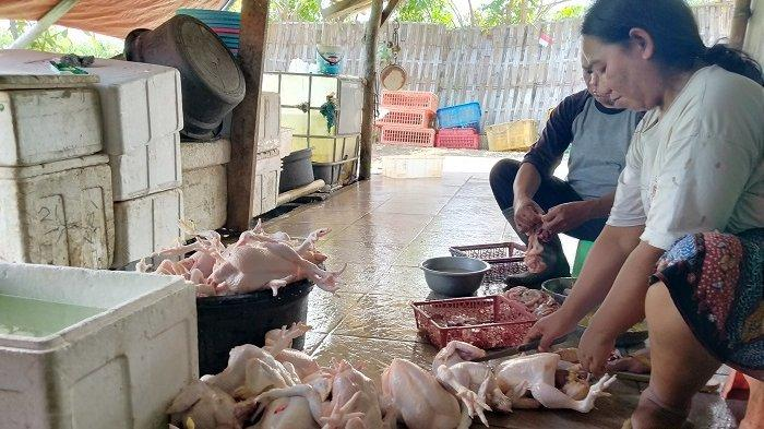 Permintaan Daging Ayam di Indramayu Meningkat dalam 3 Jam 3,5 Kwintal Daging Ludes Diborong