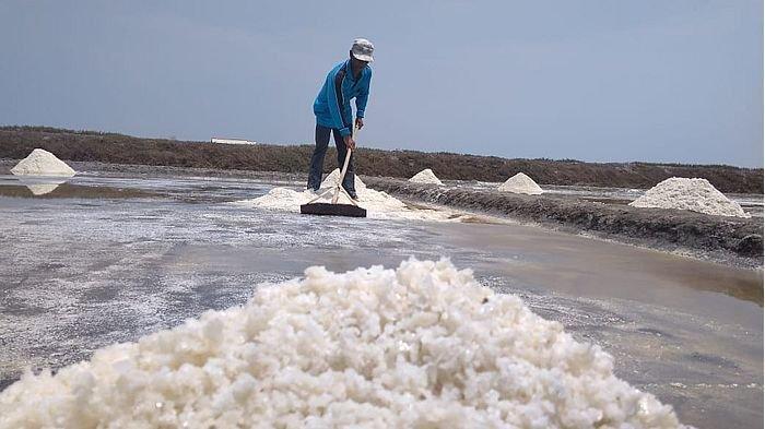 Petambak Garam di Indramayu Terpaksa Jual Garam dengan Harga Paling Rendah, Takut Enggak Laku