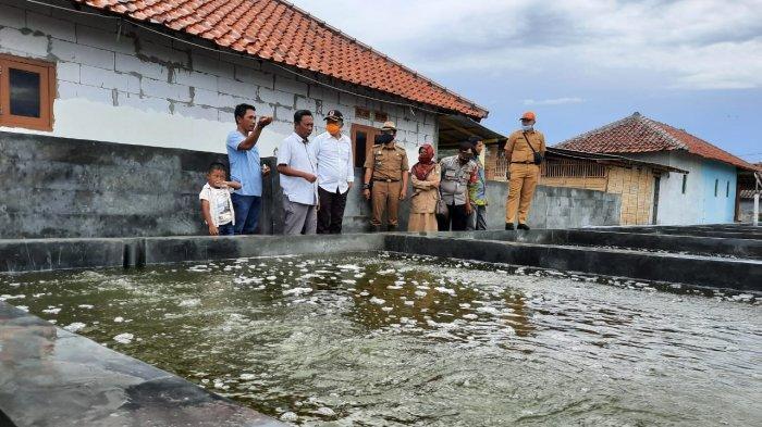 Petani Rumput Laut di Indramayu Bertahan di Tengah Pandemi, Pjs Bupati: Bisa Jadi Sentra Produksi