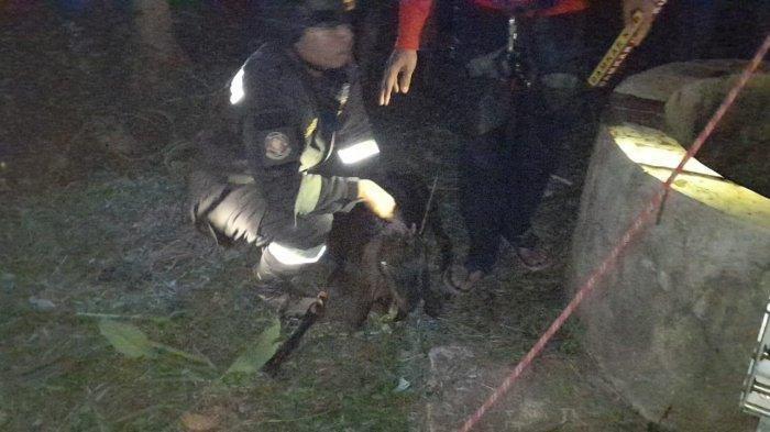 Evakuasi Jasad Pemilik Kambing, Begini Kronologi Casmadi Mati Hirup Gas Saat Selamatkan Kambingnya
