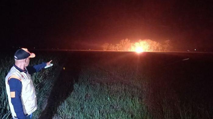 Semburan Api di Desa Sukaperna Indramayu Muncul Sendiri, Lokasi di Radius Sumur Bor Bekas Belanda