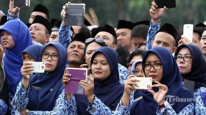 Seluruh Tenaga Honorer di Seluruh Indonesia Akan Dihapus, Ada 3 Jabatan yang Diupayakan ke P3K
