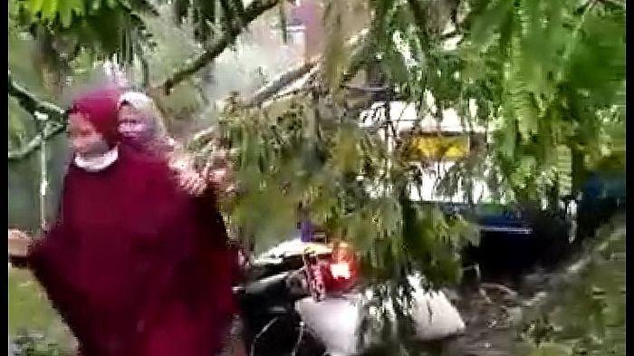 Para Santri Menjerit Histeris, Pohon Tumbang Menimpa Angkot yang Diitumpanginya di Kota Tasikmalaya