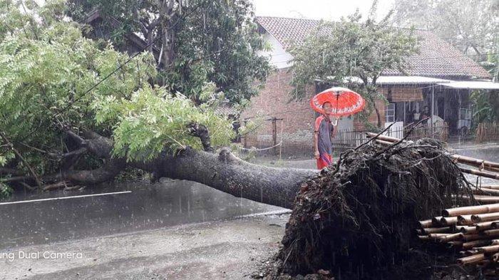 WASPADA Peringatan Dini Cuaca Ekstrem dari 1-7 Januari Kedepan, Hujan Lebat Disertai Petir dan Angin