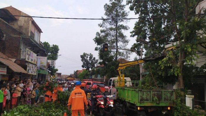 Tiga Pohon Tumbang di Kota Cimahi Akibat Hujan Deras Disertai Angin Kencang