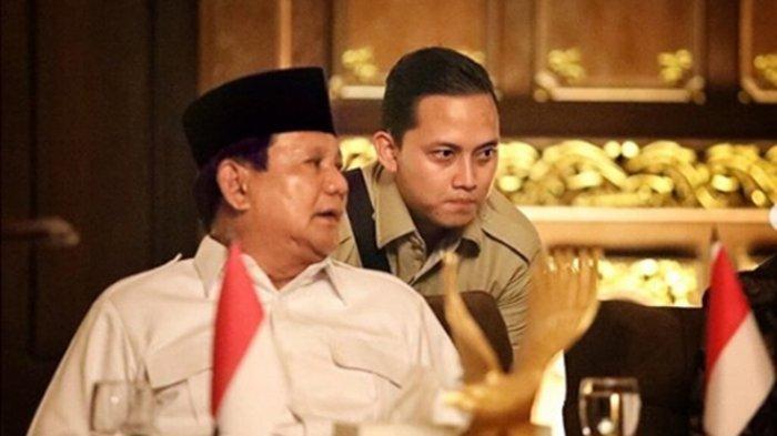 DAFTAR Kekayaan Menteri Kabinet Indonesia Maju Bentukan Jokowi, Prabowo Paling Kaya Raya