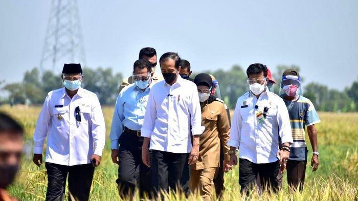 Presiden Joko Widodo ( Jokowi) mendapat keluhan soal pupuk subsidi dari para petani saat kunjungan kerjanya ke Kabupaten Indramayu, Rabu (21/4/2021)